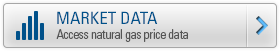 Natural Gas Price Assessments & Indices